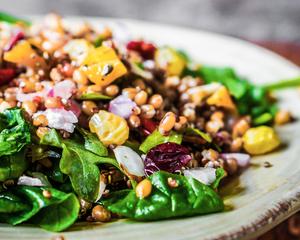 Modern Western Vegetarian Menu by Chef Tim Meijers | Clubvivre